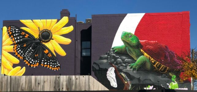Media Advisory – Downtown College Park Mural Completion